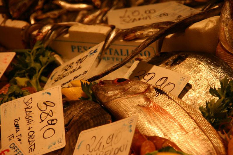 20090702001631_pesce
